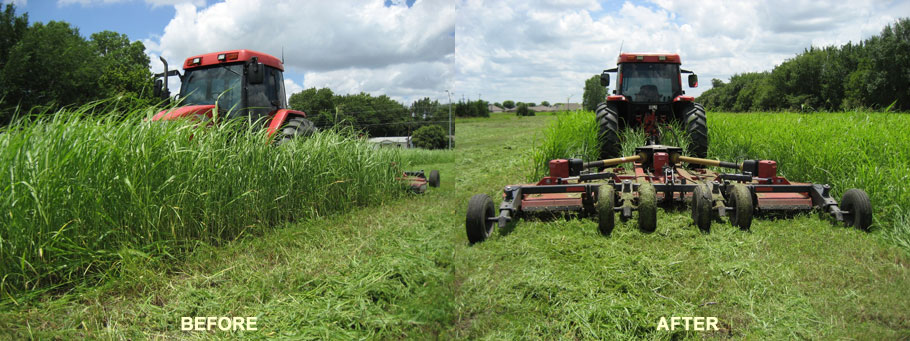 tractor mowing before and after