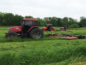 Three tractors mowing field-before